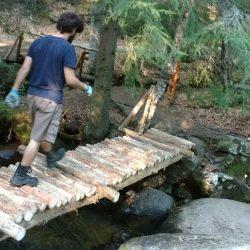 Голям мост_7